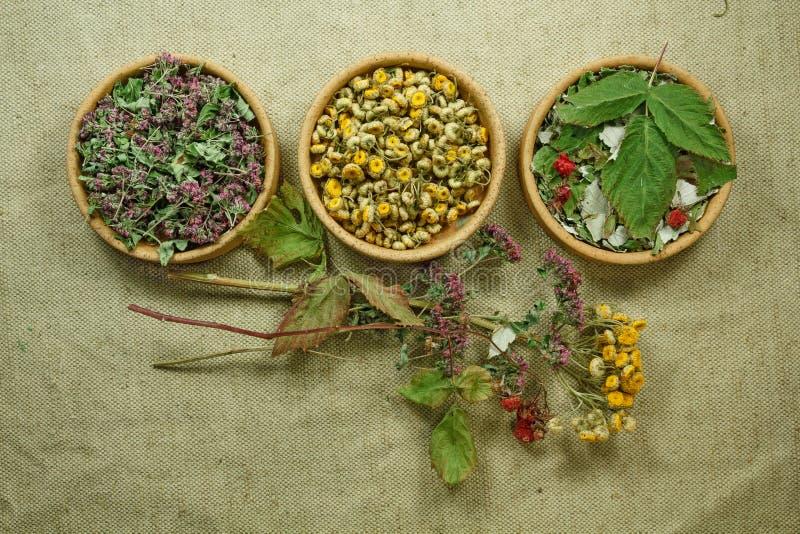 droog Kruidengeneeskunde, phytotherapy geneeskrachtige kruiden stock afbeelding
