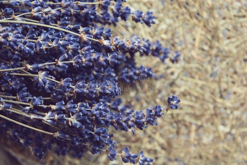 droog lavendelbloemen en boeket met lavendel stock fotografie