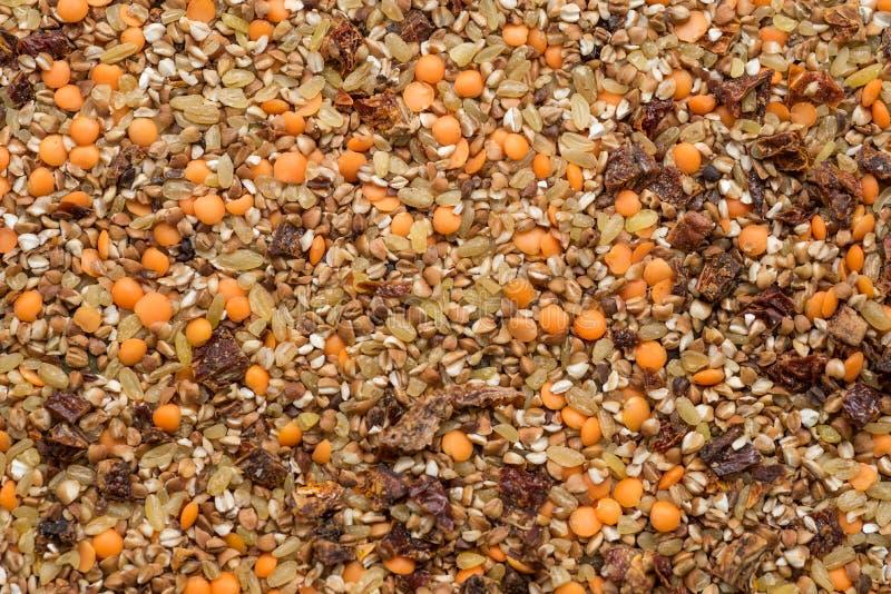 Droog mengeling van graangewassenboekweit, bulgur, linzen en droge tomaten, hoogste mening stock fotografie