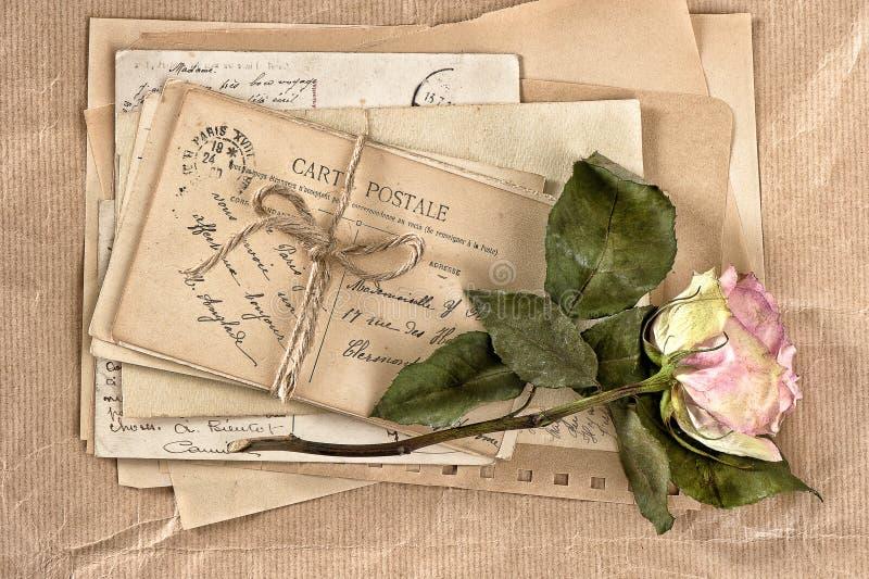 Droog nam bloem en oude brieven toe scrapbook stock afbeelding