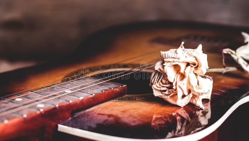 Droog nam bloem op de koorden van een gitaar toe stock fotografie