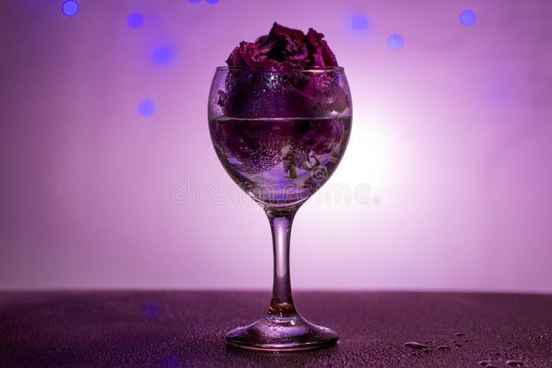 Droog nam in een wijnglas toe stock fotografie