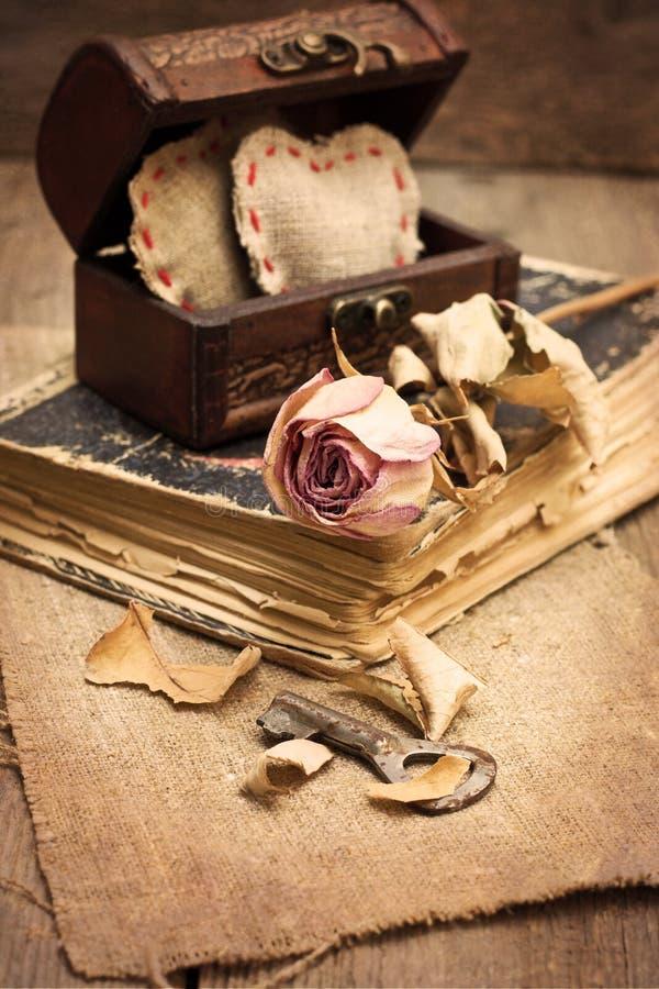 Droog nam, oud boek toe royalty-vrije stock fotografie