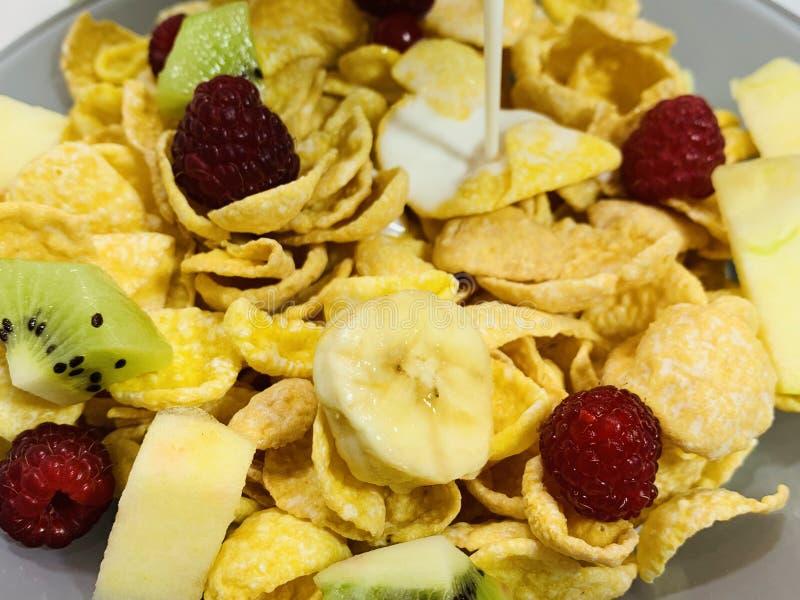 Droog ontbijtgranen met vruchten, een melkstroom stock foto's