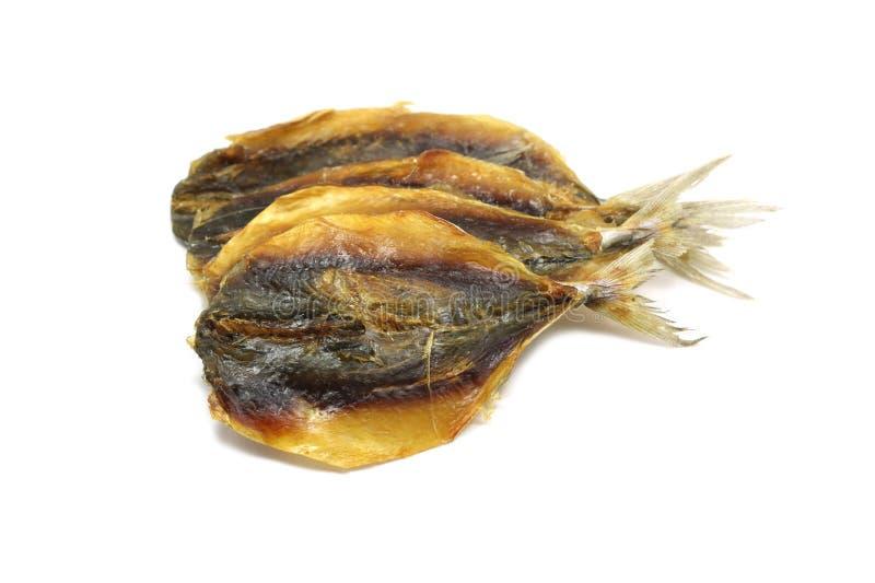 Droog visfilet stock foto