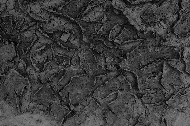 Droog vlekken van sediment stock foto