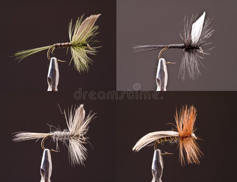 Droog Vliegen stock afbeeldingen