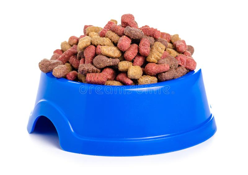 Droog voedsel in een kom voor honden en katten stock foto