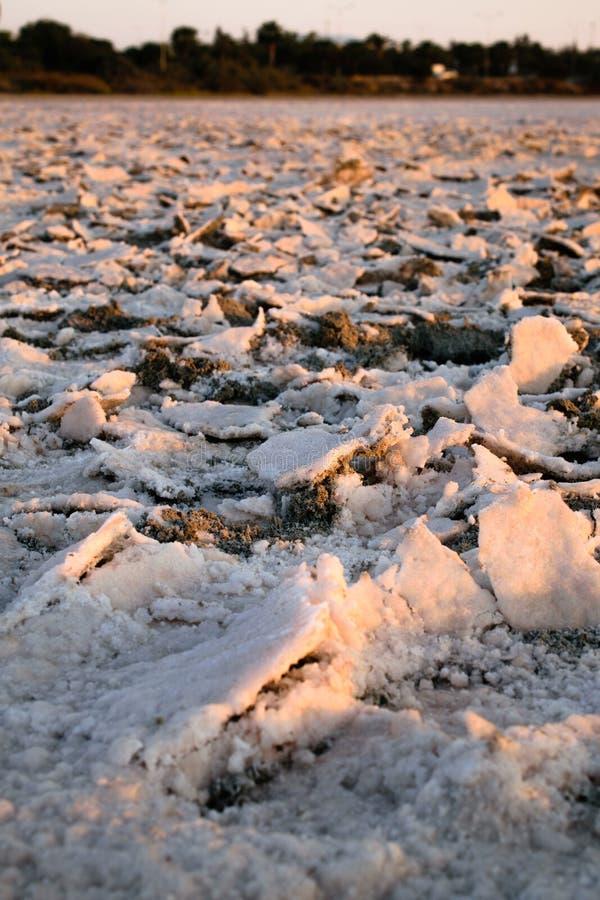 Droog zout meer in Larnaca, Cyprus stock foto's