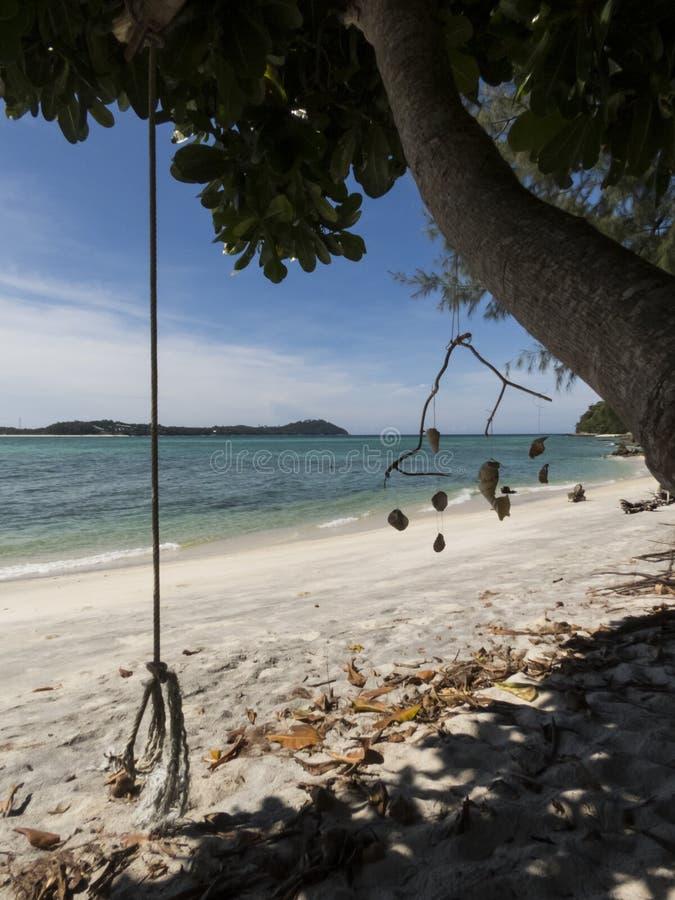 Droom geheim strand en dode bomen bij het Nationale Park van Tarutao, Thailand stock foto's