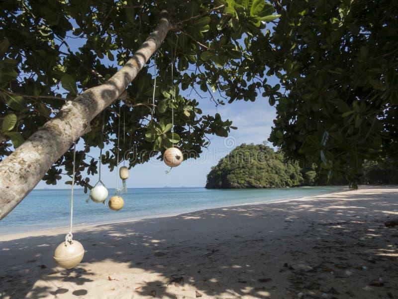 Droom geheim strand en verfraaide boom bij het Nationale Park van Tarutao, Thailand stock afbeeldingen