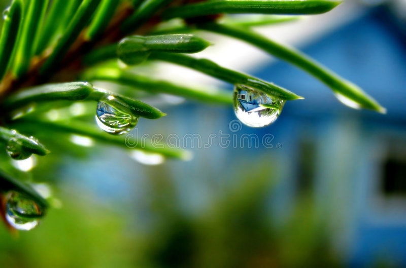 Download Drop stock photo. Image of rain, light, water, reflection - 2198194