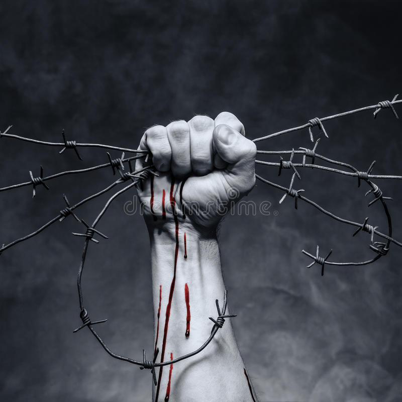 Drop of blood. On a man's hand. Hand grasps barbed wire royalty free stock image