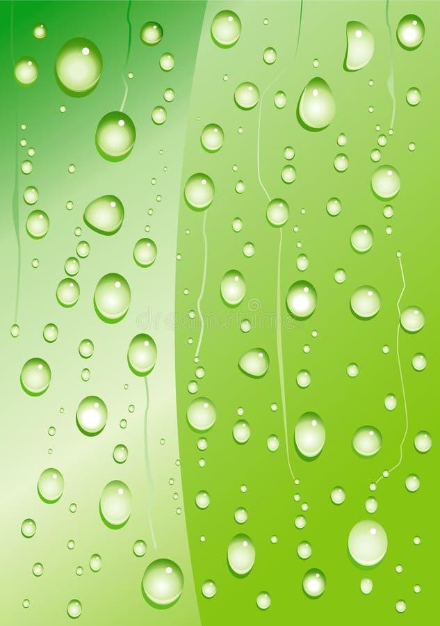 Drop Plant Stock Image