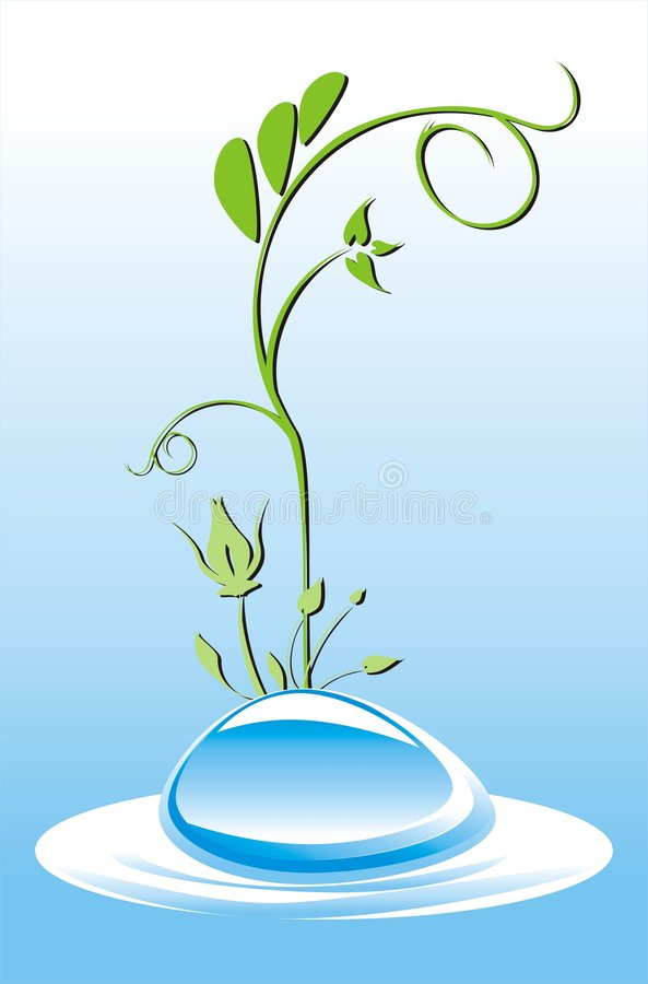 Download Drop Of Water. Composition For Card Stock Vector - Image: 9143281