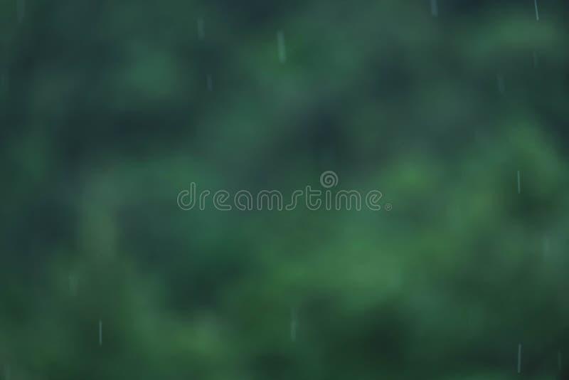 droplets of rain in rainy season stock images