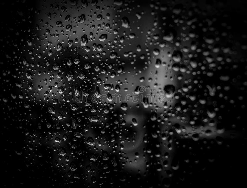 Droplets On Spiderweb Free Public Domain Cc0 Image