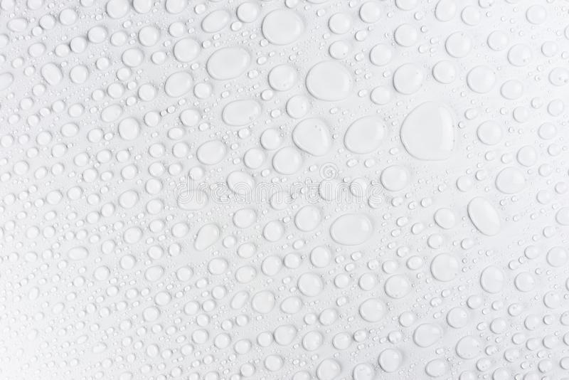 Droplets of water on a white, matte background illuminated with a delicate light. Droplets of water on a white, matte background illuminated with a delicate royalty free stock images