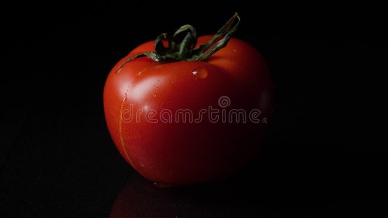 Droppar av vattenstekflott från ovannämnda mogna tomater Ram Stäng sig upp av en droppe av vattenstekflott från en tomat arkivfoto
