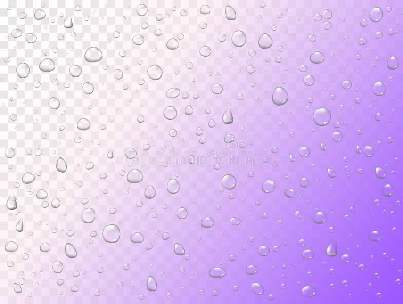Droppar för vektorregnvatten på genomskinlig bakgrund Kondenserade rena små droppar Realistisk modell på yttersida för fönsterexp royaltyfri illustrationer