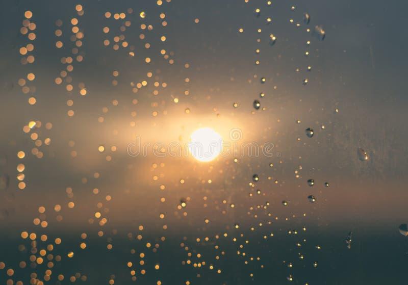 Droppar på fönstret arkivfoton