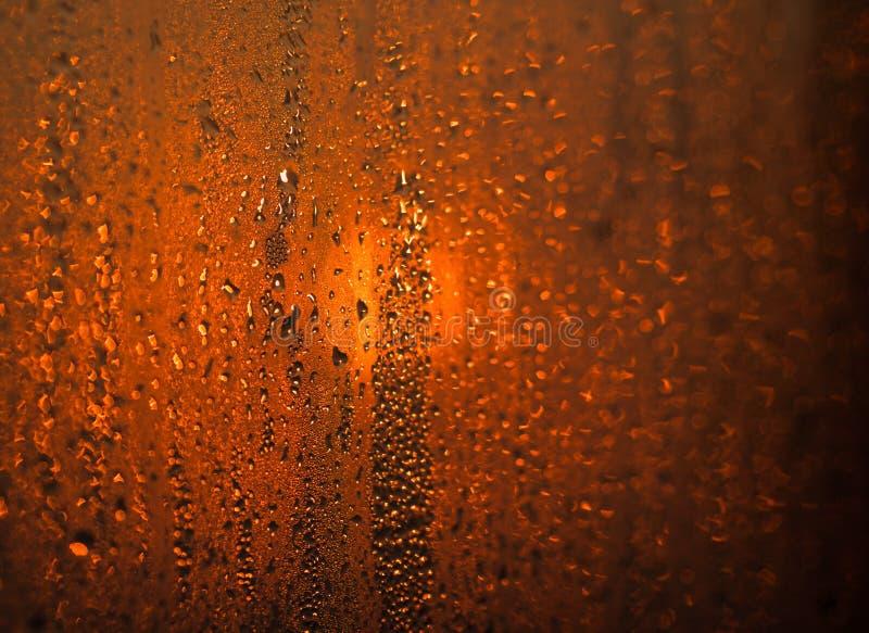 Dropparna på exponeringsglas royaltyfri foto