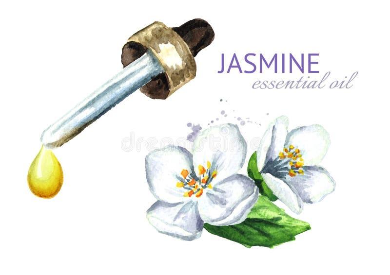 Droppe för vit jasminblomma och för nödvändig olja aromatherapy brunnsort dragen illustration för vattenfärg som hand isoleras på vektor illustrationer