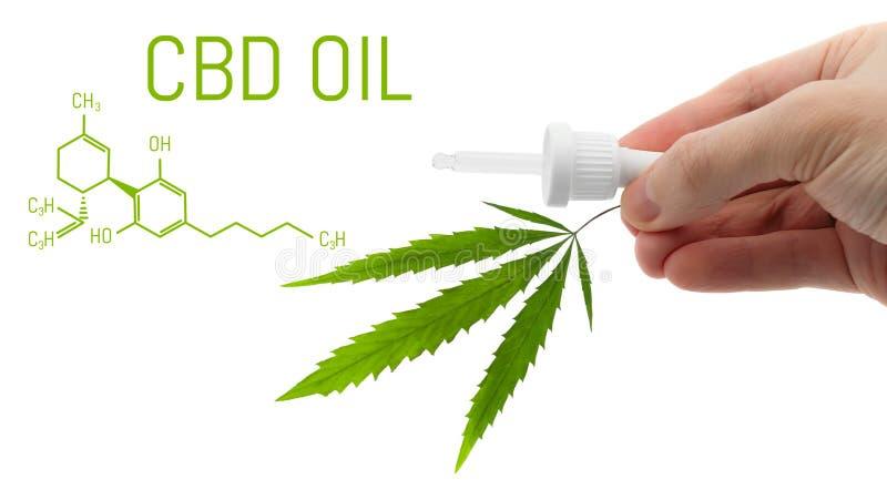 Dropper με το πετρέλαιο καννάβεων CBD και το πράσινο φύλλο κάνναβης που απομονώνονται υπό εξέταση στο λευκό Ιατρική έννοια μαριχο στοκ φωτογραφία