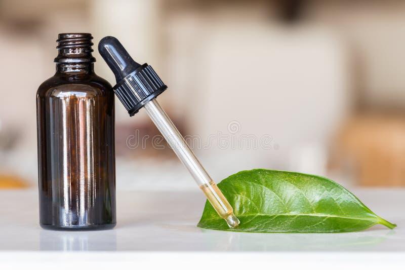 Droppglass med flytande med en flaska och ett grönt blad arkivbild