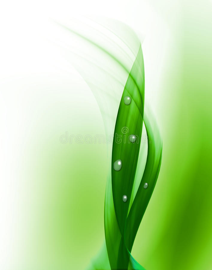 Download Drops of dew stock illustration. Image of clear, nature - 10937034