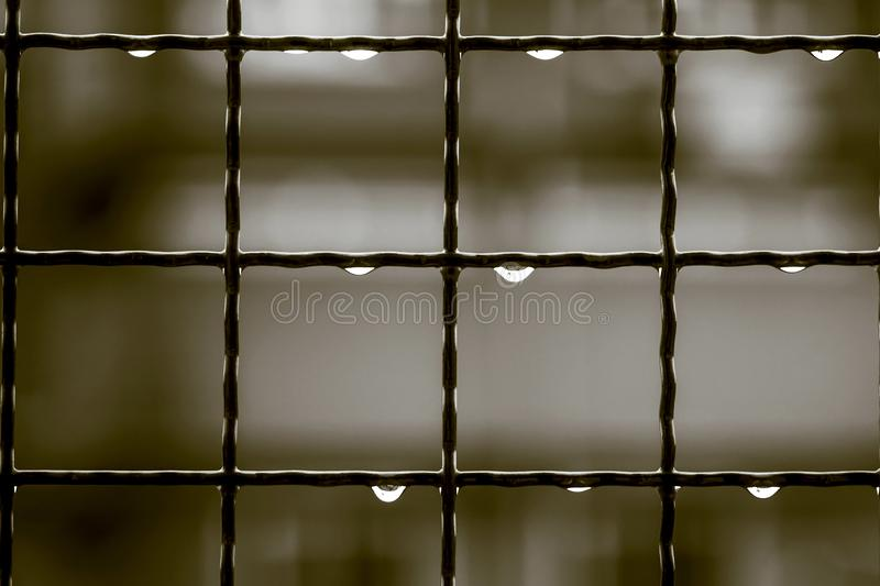 Drops on the iron grate after rain at night in vintage color stock images