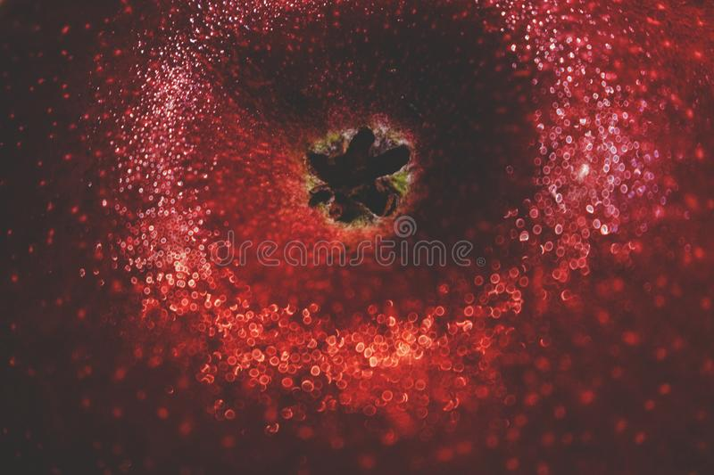 Download Drops Of Water On A Red Ripe Apple Macro Boke Concept Wallpaper