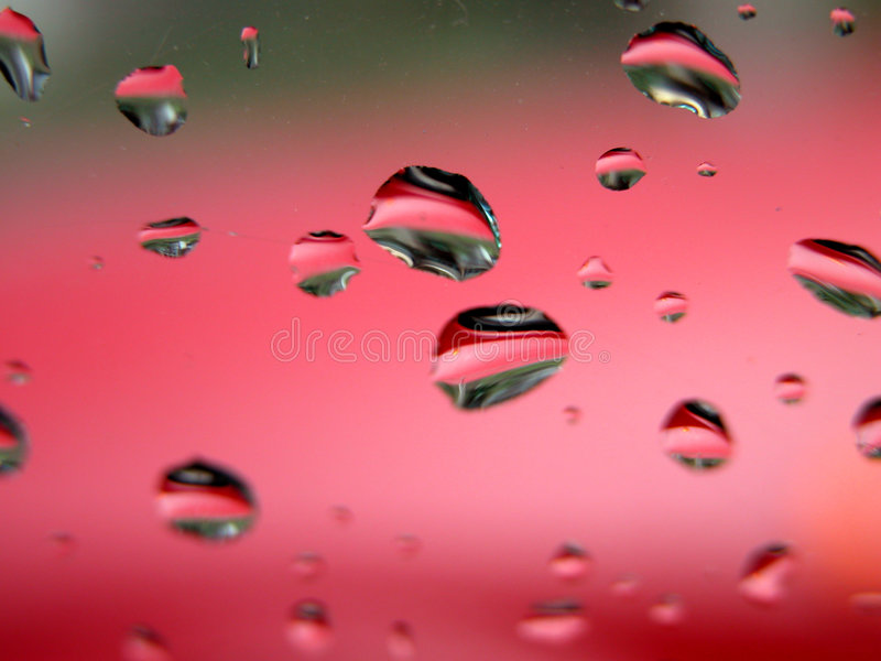 Download Drops Of Water - Sharp Macro Stock Photo - Image: 230