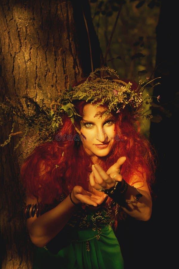 Drottning av skogen fotografering för bildbyråer