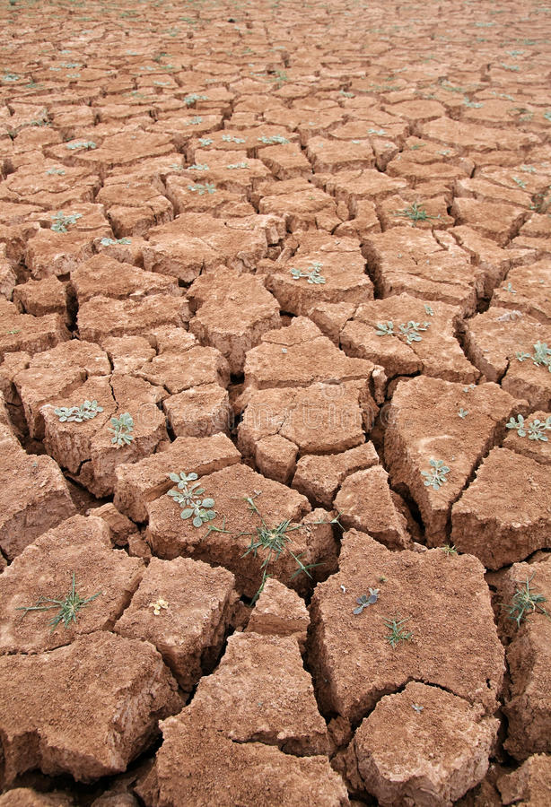 Download Drought stock image. Image of agriculture, earth, dryness - 26869293