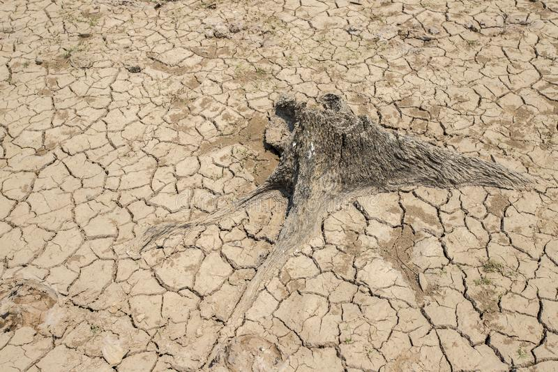 Drought, Climate change and drought land. Dam at Parched, Dry terrain, Drought, Climate change and drought land stock images