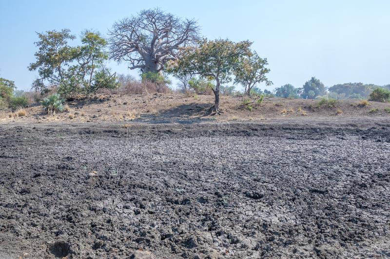 Hot and dry conditions in the northern parts of the Kruger National Park in Africa. Drought conditions prevailing in the pre-rainy season in the northern parts stock photography