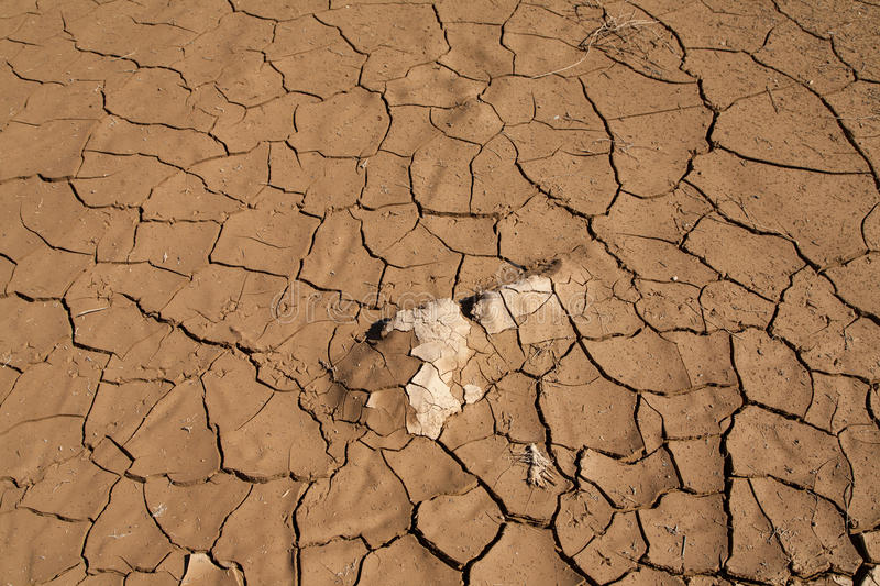 Drought and Desertification. Land degradation, desertification and drought in the Red Sea governorate in Marsa Alam, Egypt royalty free stock photo