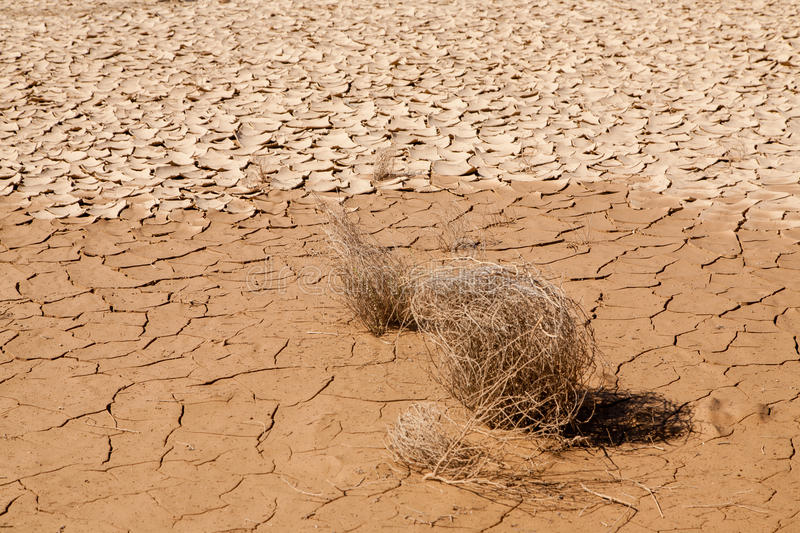 Drought and Desertification. Land degradation, desertification and drought in the Red Sea governorate in Marsa Alam, Egypt royalty free stock photography