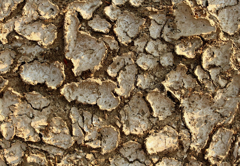 Drought Environment Stock Photography