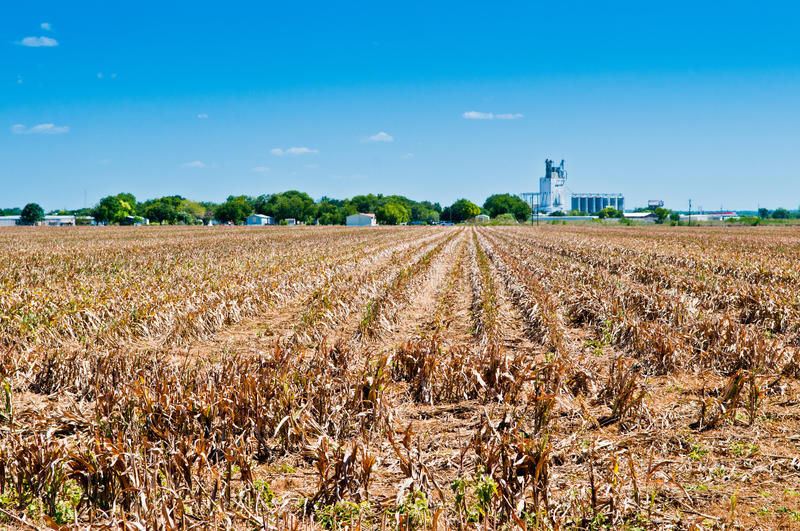 Download Drought on the Farm stock image. Image of texas, lost - 27587427