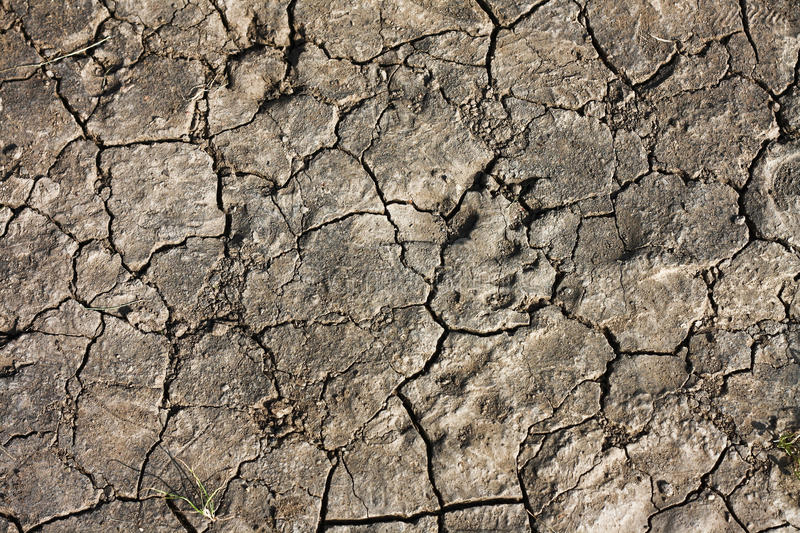 Download Drought land stock image. Image of extreme, broken, land - 14706051