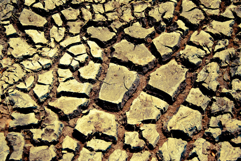 Download Drought land stock image. Image of brown, drain, cracked - 25914613