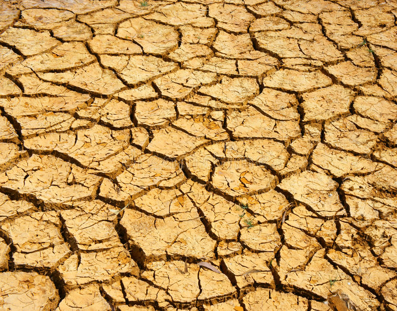 Drought land, climate change, hot summer royalty free stock photos