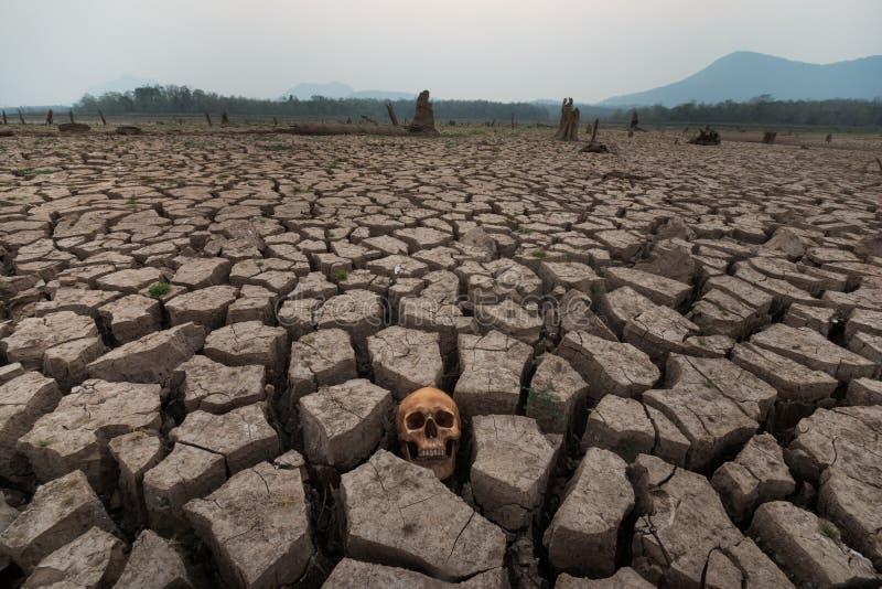 Drought land world crisis royalty free stock photography