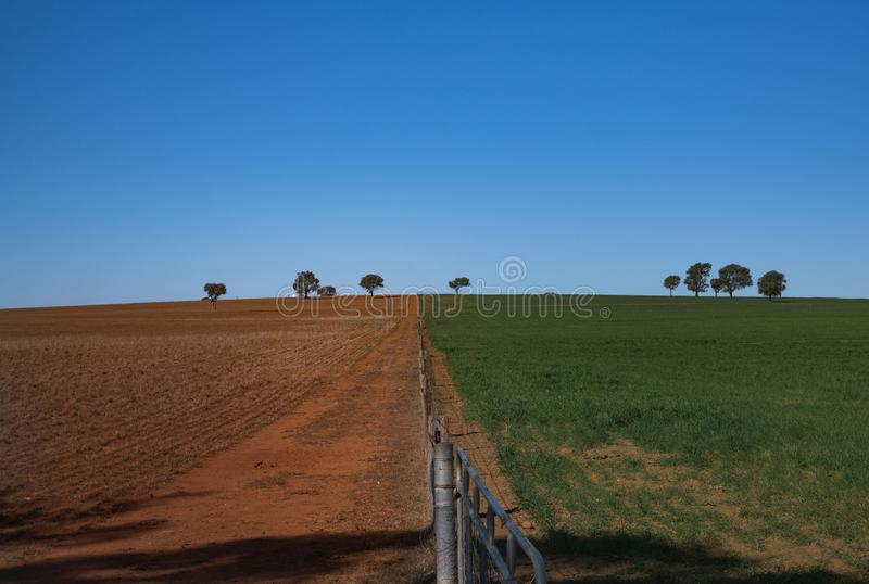 Drought red soil paddock with green field and fence. Grass is greener on other side of fence in drought affected Australia with red soil and green paddock royalty free stock photo