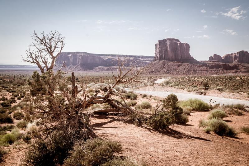 Drought in the southwest of the USA. Desert vegetation and rocks monuments. Journey to the southwest of the USA. Panorama of the Valley of Monuments in Utah. US royalty free stock photography
