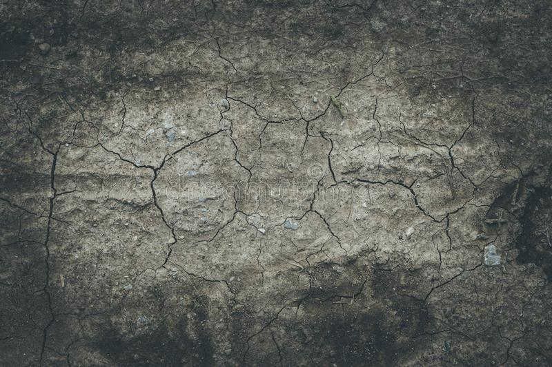 Drought in summer: fractured ground on an agriculture field. Dry ground: water shortage in hot summer, agriculture desert earth dirt soil drought background royalty free stock image