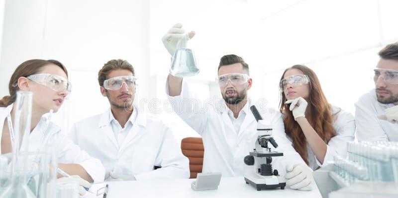 Drużyna naukowowie pracuje wpólnie przy laboratorium obraz stock