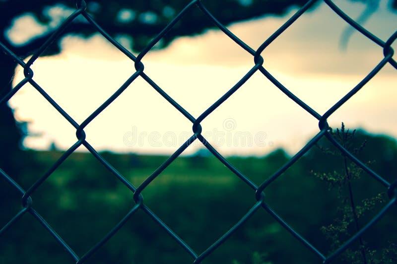 Drucianej siatki ogrodzenie